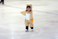 little-lion-skating-1467781